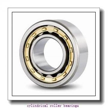 2.675 Inch | 67.942 Millimeter x 3.15 Inch | 80 Millimeter x 0.827 Inch | 21 Millimeter  LINK BELT M1307D  Cylindrical Roller Bearings