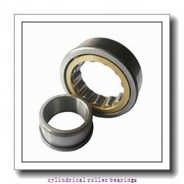 2.337 Inch   59.362 Millimeter x 3.939 Inch   100.046 Millimeter x 0.984 Inch   25 Millimeter  LINK BELT M1309EAB  Cylindrical Roller Bearings