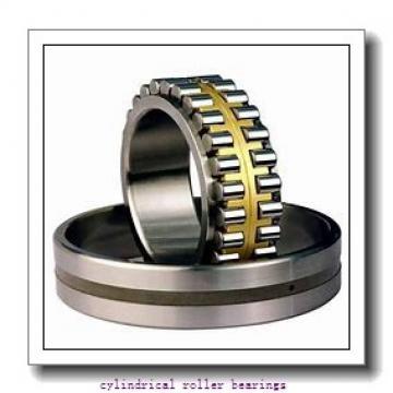 1.969 Inch   50 Millimeter x 4.331 Inch   110 Millimeter x 1.063 Inch   27 Millimeter  LINK BELT MU1310UV  Cylindrical Roller Bearings
