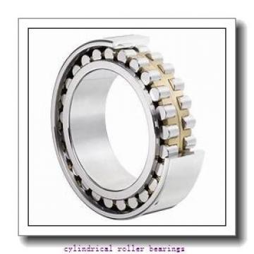 1.181 Inch | 30 Millimeter x 2.835 Inch | 72 Millimeter x 0.748 Inch | 19 Millimeter  LINK BELT MU1306GUV  Cylindrical Roller Bearings
