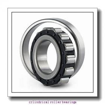 4.724 Inch | 120 Millimeter x 8.465 Inch | 215 Millimeter x 1.575 Inch | 40 Millimeter  LINK BELT MU1224UMW665  Cylindrical Roller Bearings