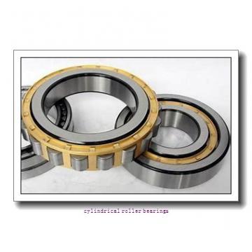 2.165 Inch | 55 Millimeter x 4.724 Inch | 120 Millimeter x 1.142 Inch | 29 Millimeter  LINK BELT MU1311UMWS Cylindrical Roller Bearings