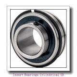 TIMKEN LSM100BR  Insert Bearings Cylindrical OD