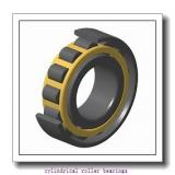 1.337 Inch | 33.972 Millimeter x 2.441 Inch | 62 Millimeter x 0.669 Inch | 17 Millimeter  LINK BELT M1305GGTVW958  Cylindrical Roller Bearings